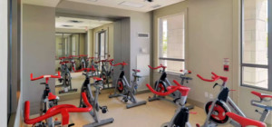 One Park Tower - 388 Prince of Wales Drive - Bicycle Room Exercise