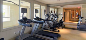 One Park Tower - 388 Prince of Wales Drive - Exercise Workout