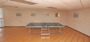 3650 Kaneff Crescent - Place IV Condos - Ping Pong