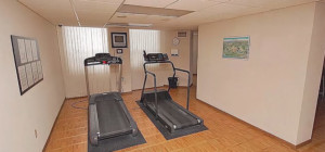 3650 Kaneff Crescent - Place IV Condos - Exercise Cardio