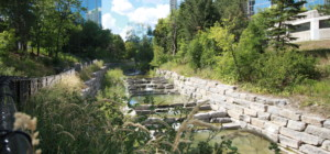 70 Absolute Avenue - Absolute World - Mississauga - Walking Path Trail