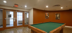 Anaheim Tower 1 - 25 Trailwood Drive Mississauga L4Z3K9 - Billiards